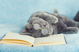 Cat wearing glasses lying on the back on a book